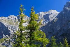 20170829-Canon EOS 6D-2732 (Bartek Rozanski) Tags: ramsauamdachstein steiermark austria ramsau dachstein alps alpine austrian mountains range styria nature