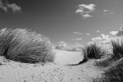 dune3 (VERCRUYSSE Jerome) Tags: dune sable sand beach plage france picardie hautsdefrance baiedesomme ciel sky nb black white jerome vercruysse