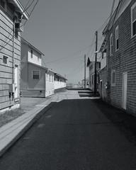 Beach Road (Tom55K) Tags: bnw blackandwhite monochrome oldorchardbeach maine mainecoast road