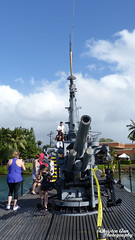 Hawaii_2017_0746 (Christen Ann Photography) Tags: 2017 hawaii hawaii2017 holidays honolulu november2017 ohau pearlharbour usa ussbowfin