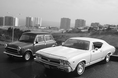 1968 Chevrolet Chevell SS 396 & 1974 Mini Cooper 1300 diecast 1/24 made by Welly (rigavimon) Tags: diecast miniaturas 124 chevrolet chevelle minicooper miniature welly blancoynegro blackwhite blanconegro