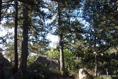 Крим Хрестова гора InterNetri  Ukraine 2011 029