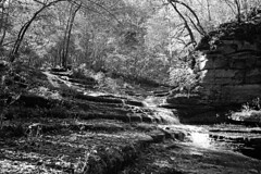Raven Run KY (Nickademus42 (Thank you for 1 million views)) Tags: olympus xa2 xa c41 bw black white made eu film photography project podcast raven run kentucky park ky