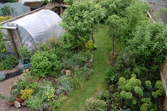 Looking Down on the Back Garden - May 2018 (basswulf) Tags: polytunnel backgarden d40 1855mmf3556g lenstagged unmodified 32 image:ratio=32 permissions:licence=c 20180516 201805 3008x2000 normcres oxford england uk garden lookingdownonthegarden