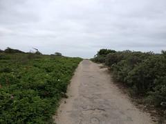 Strandslag 9 (Nobo Sprits) Tags: westduinpark westduinparkdenhaag westduinparkscheveningen denhaag duinen dunes park thehague lahaye lahaya strandslag9