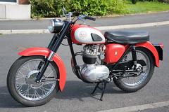 BSA B40 Star (1962) (SG2012) Tags: bsa motorcycle motorbike classicbike classicmotorcycle scarlett bsl390