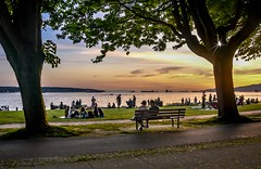 Leisure Light (Christie : Colour & Light Collection) Tags: frame framing trees ocean people leisure bc canada vancouver calm serene tranquilty sunset sundown outdoors nikon dslr dusky spring britishcolumbia bench englishbay