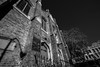 DSC01572 (Damir Govorcin Photography) Tags: sacred heart catholic church 1850 darlinghurst sydney blackwhite wide angle trees sony a7rii zeiss 1635mm natural light