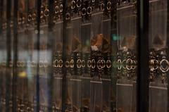 Fundstücke (yfdekock) Tags: chemnitz smac archäologie zeis planar 14 50mm nikon d7000 planart1450