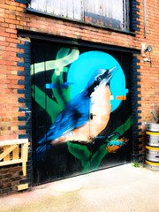 Artist Aspire (lindabalone) Tags: birdmural southlondon artinthecity streetartcommunityproject sprayexhibition20 graffiti wallart aspire southeystreet penge