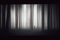 Where is my mind? (der_peste (on/off)) Tags: dark haunted moody sombre slender woods icm light darkscape fear silhouette mist fog misty foggy hss