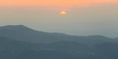 2018-04-21--chamois0011.jpg (heiserge) Tags: vosges leverdesoleil printemps brouillard hohneck mountain montagnes brume fog france europe paysages lorraine