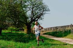 trail_delle_rocche_roero_2018_0394 (Ecomuseo delle Rocche del Roero) Tags: aprile ecomuseodellerocche edizione montà rocche trail uisp trailrunning roero