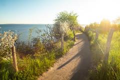 Gegenlicht (LB-fotos) Tags: fisheye ostsee balticsea light sun summer nature natur coast küste ocean beach strand meer sommer wasser water landscape landschaft