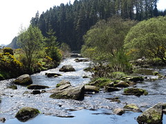 DSC07443 (guyfogwill) Tags: belever dartmoor dartmoornationalpark devon guyfogwill riverdart unitedkingdom dartmoorforest gbr