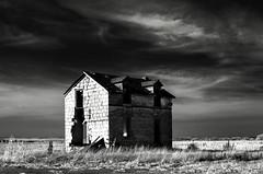 Pearl, Kansas (unknown quantity) Tags: monochrome sky clouds abandonedhouse shadows horizon brokenwalls openwindows barewood blackandwhite opendoorway field junk deterioration neglect weathered cloudsstormssunsetssunrises hss