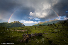 Rainbow. (Dimitar90) Tags: rainbow landscape drama clouds sunset moutains forest woods tree fallen outdoors explore nature landscapelovers macedonia canon canonphoto canonphotography 6d sun light colors grass spring kozuf gevgelija
