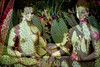 International Museum Day (AntoineLegond) Tags: painting canvas gabrielledestree muséedulouvre louvre museum cactus doubleexposure contaxg2 zeiss planar kodak portra film analog paris internationalmuseumday