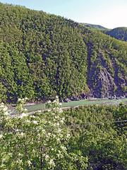 18050718775valtrebbia (coundown) Tags: gita tour statale stradastatale 45 ss45 valtrebbia trebbia natura boschi verde fiume