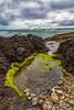 Cape Perpetua, Oregon Tidepools (ChristineDarnell) Tags: oregon tidepools pacificocean lowtide capeperpetua