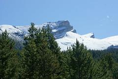 OpalHiills00013 (jahNorr) Tags: summertrip 2012 canadaalbertajaspernationalparkopalhills