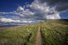 DSC00878 (kyleddsn) Tags: hiking utah ogden spring