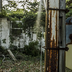 Wasteland thumbnail