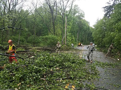 New York National Guard (The National Guard) Tags: newyorknationalguard hudsonvalley stormresponse roadclearing disasterresponse new york ny nyng storm cleanup response road street hudson valley branches trees emergency responders debris ng nationalguard national guard guardsman guardsmen airmen airman soldier soldiers us army air force united states america usa military troops 2018