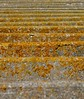 Decaying Divisions (Grooover) Tags: concrete beams pier decay yellow lines stripes walberswick suffolk grooover
