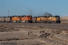 UP 5790 | GE AC44CWCTE | BNSF Orin Subdivision (M.J. Scanlon) Tags: ac44cwcte bnsf bnsf9343 bnsf9981 bnsfcsbmphh062a bnsforinsub bnsforinsubdivision burlingtonnorthernsantafe business csbmphh csbmphh062a cnank canon capture cargo coal coalcountry commerce conversecounty digital emd eos engine freight ge geac44cwcte haul horsepower landscape locomotive logistics mjscanlon mjscanlonphotography merchandise mojo move mover moving outdoor outdoors photo photograph photographer photography picture powderriverbasin powderrivercoal rail railfan railfanning railroad railway sbmphh sd70ace sd70mac scanlon sky steelwheels super track train trains transport transportation tree up up5790 up5980 upcnank upcnank928 unionpacific wow wyoming ©mjscanlon ©mjscanlonphotography