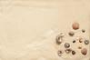 sea shells (www.layerplay.design) Tags: allegroprint art bto bungalow canvas decosticker designcollective era fabric furniture furnituresticker hdb ikea interior interiordecor layerplay orangetee porperties poster posterprint print printerior privateestate privatehousing property propertyguru sea seaside sticker wallart beach burn day design follow heat holidays hot imprint leisure ocean paradise sand sandy seashell seashells seashore shell shells shore summer sun sunny tan tanning texture travel trip tropical vacation wall warm