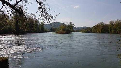 Zusammenfluss von Aare, Reuss und Limat