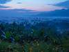 20170127-P1270176 (cooneybw) Tags: indonesia traveling asia landscape morning sunrise