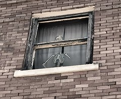 Needs Some Meat On Those Bones (pam's pics-) Tags: ks kansas us usa america midwest smalltown pamspics pammorris mankatokansas architecture