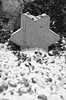 Star Of David Memorial Stone (tcees) Tags: dohánystreetsynagogue dohányu2 budapest hungary pest urban x100 fujifilm finepix starofdavid memorial snow snowing synagogue fence wall bw mono monochrome blackandwhite stones trellis ivy