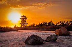 Lookout Tower Sunset - Robinsons Preserve (Cracked_Lens) Tags: tower sunset dusk sunlight floridasunset colorful colors color sky skyart skyonfire floridasky floridatrail floridahiking floridanature florida floridapreserve hikingphotography hikingtrail hiking hikingphotos