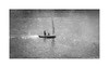 On the river (Alexandr Voievodin) Tags: river water people sailboat blackandwhite monochrome nikon1v1 ngc
