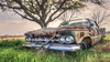 Love Is Just A Lyric (Wayne Stadler Photography) Tags: neglected vehicles abandoned texas transportation derelict automobiles car rusty rustography automotive rural rustographer cars rust