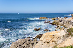 IMG_8421 (boguscoder) Tags: pacificgrove california unitedstates us