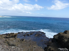 Hawaii_2017_0803 (Christen Ann Photography) Tags: 2017 bustourwithosricchau halonablowhole hawaii hawaii2017 hawaiicon holidays november2017 ohau usa