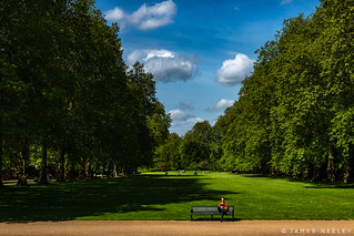 Hyde Park Afternoon