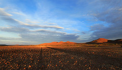 Sunrise over the desert - Palmwag - Namibia (lotusblancphotography) Tags: africa afrique namibia namibie nature landscape paysage desert désert sunrise aurore sky clouds nuages ciel