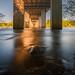 Golden flood @ South Carolina