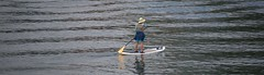 In The Middle Of The River (Scott 97006) Tags: woman female lady paddle river water board hat exercise recreation standing