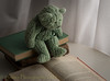 Learning About Things (HTBT) (13skies) Tags: reading windowlight curtains sitting books pages intent serious knowledge fun information words study smart teddybeartuesday teddy teddybear quiet happyteddybeartuesday sonyalpha99 sony