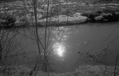 Scan-180415-0002 (Oleg Green (lost)) Tags: expired 200 kodakacademy spring april snow bw film 35mm province russia voigtlander bessat cskopar 4025mm wideangle rodinal