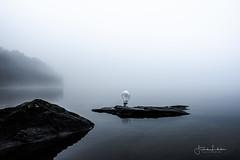 Life On Earth (Fredrik Lindedal) Tags: life earth lake stones rocks fog forest foggy bulb reflection reflections mist misty light silence lindedal