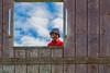 You're framed (Vaas.V) Tags: bristol vittal vittalam pranshu pentax pentaxks2 pentax50mmf14 blue sky clouds