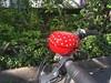 Klingeling - endlich wieder radeln (Sockenhummel) Tags: iphone berlin sonntag sommer fahrradklingel glückspilz fliegenpilz dotties punkte rotweis