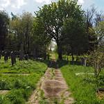 york cemetery thumbnail